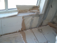Proactive Building Moisture and Mold Evaluations